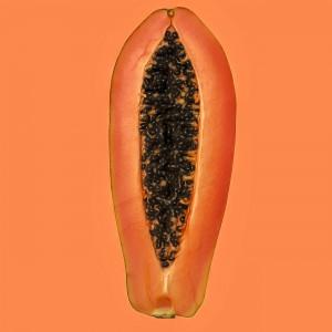 """Vegetables """"Papaya"""" by Thomas Hümmler"""