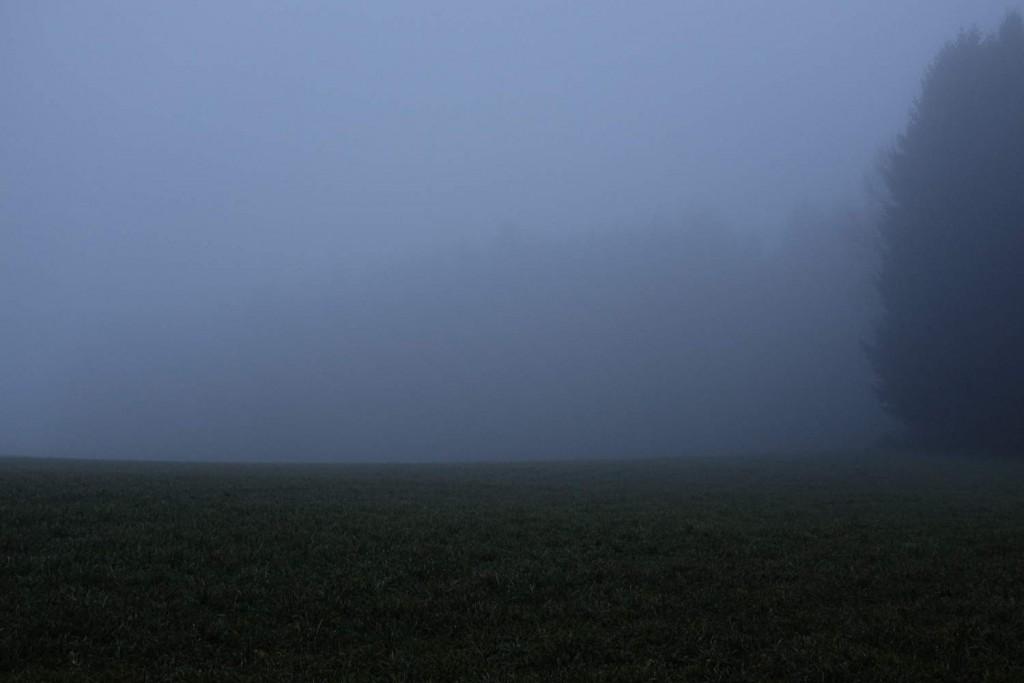 Statt Weichzeichner: Nebel ist in der Landschaftsfotografie ein stimmungsvolles Element (c)2014 Thomas Hümmler – München · Grafing